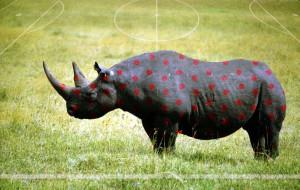gepunktetes Nashorn als Symbol